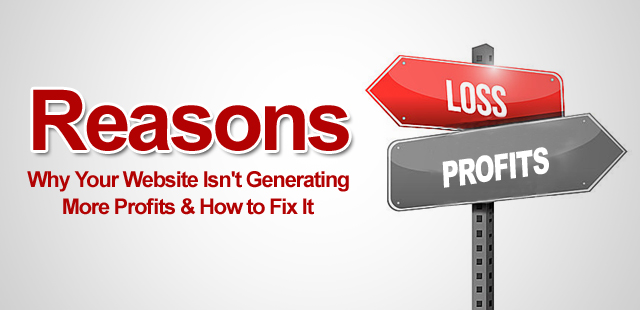 Reasons Why Your Website Isn't Generating More Profits & How to Fix It